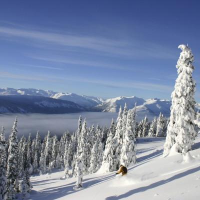BIg White Skiier