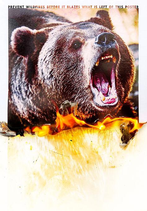 The Burning Poster Series - Bear.jpg
