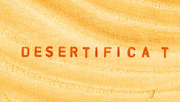 Desertification of a tree font.jpg