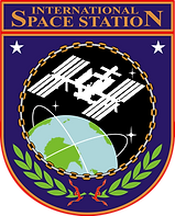 ISS_insignia.png