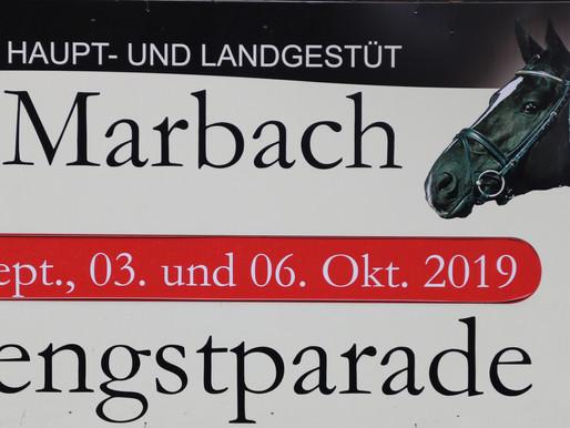 Bericht und Impressionen - Züchterfahrt vom 06.10.2019 zur Hengstparade Marbach