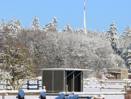 Ein wahrer Winterzauber - ein Sonntag, Anfang Januar 2021