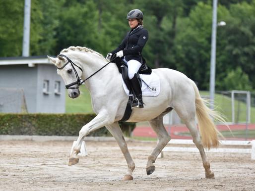 Pferd des Monats April: Mein Trakehner MON BARON TSF - liebenswert, erfolgreich und wunderschön.