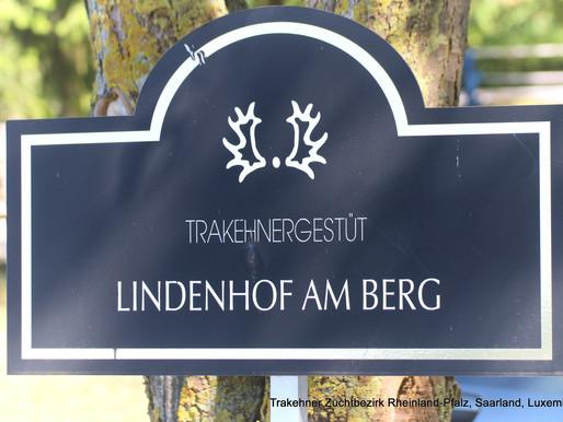 Kurzbericht und Impressionen - Fohlenmusterungstermin vom 14.09.2019 auf dem Trakehnergestüt Lindenh