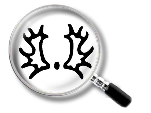 Aktuelle Verkaufspferdegesuche des Trakehner Verbandes - Stand: 01.02.2020