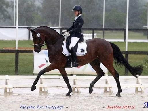 Verkaufspferde-Angebot: Qualifikantin zur Weltmeisterschaft der jungen Pferde - 6-jährige, hoch tale