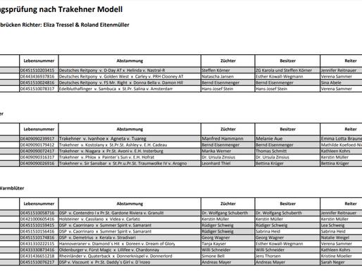 Trakehner Weekend - Impressionen und Ergebnislisten der Stutenleistungsprüfung