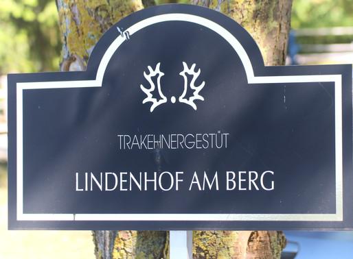 Fohlenmusterung 08.08.2020 - Trakehnergestüt Lindenhof am Berg - ein letztes Mal