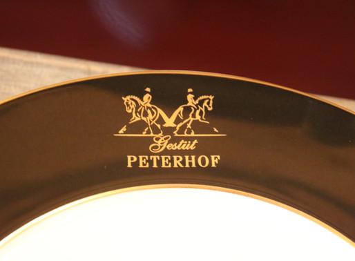 Perspektivlehrgang für Trakehner Dressurpferde auf dem Gestüt Peterhof
