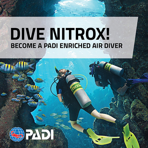 Enriched Air Nitrox Course