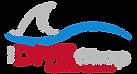 TDS_Color Logo.png