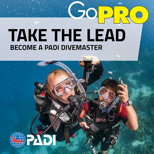 Divemaster: E-Learning Only