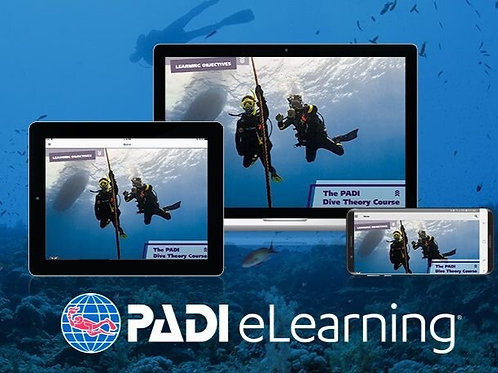 Dive Theory Online - E-Learning