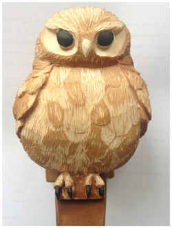 """The Little Owl"""