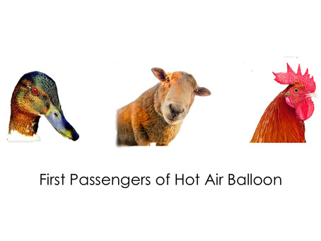 Balloonist Breed by Darwin