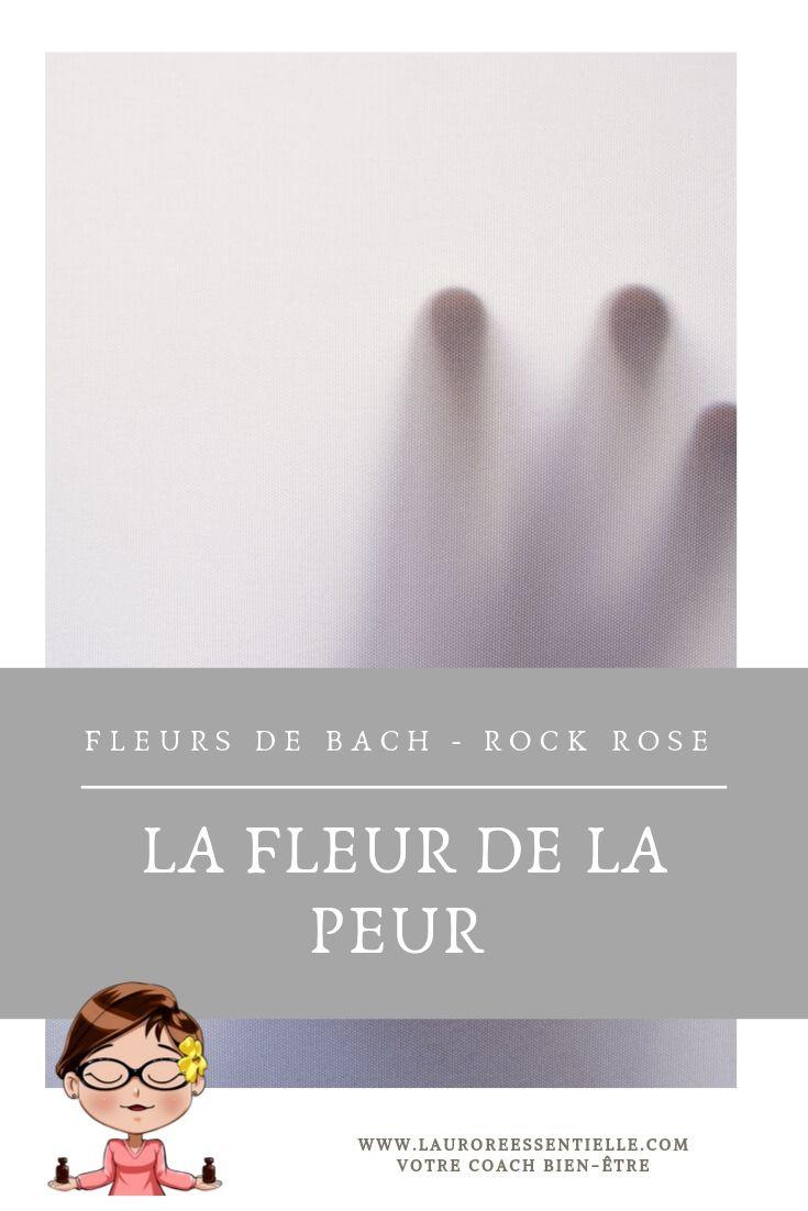 La fleur de la peur - Rock rose