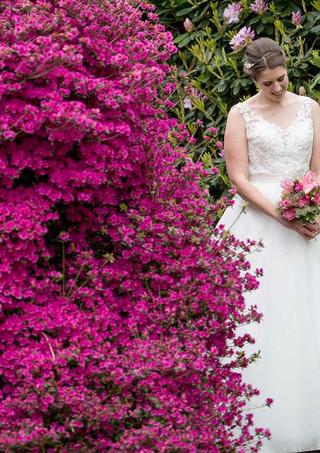 Hochzeitsbilder im GartenBild von Andy Bachmann