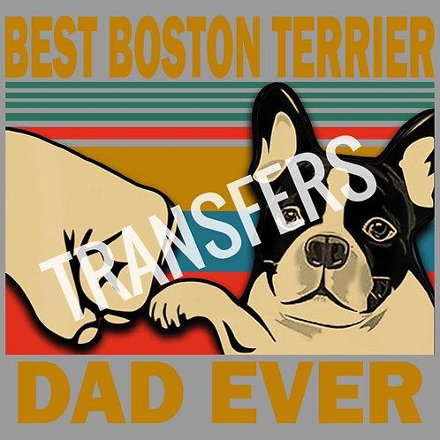 Boston Terrier HTV