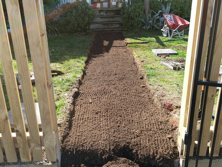 Laying a new path on Taupo View