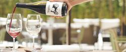 Botella vino - high res
