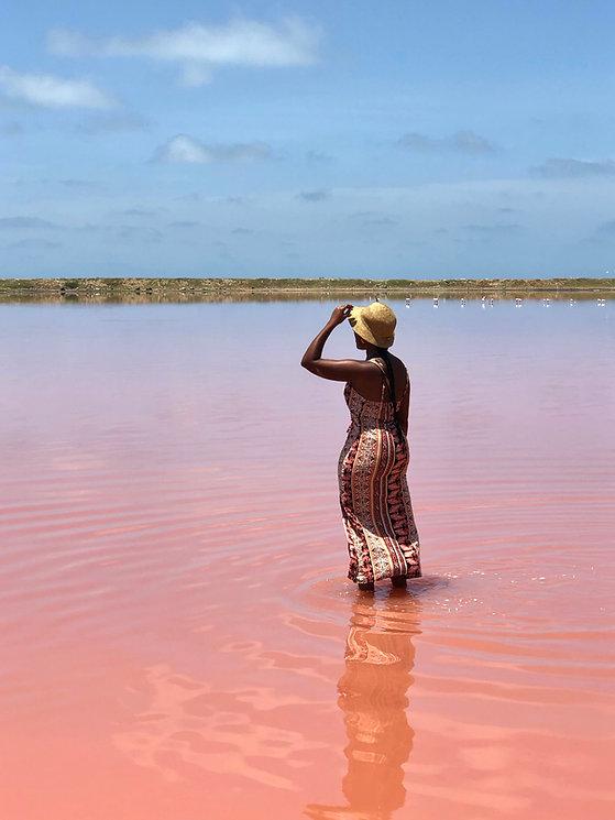 pink lake 2019.jpg