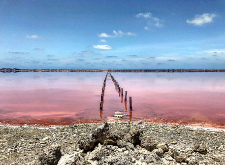 Pink Sea, Colombia