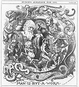 Caricature_of_Darwin's_theory_in_the_Pun