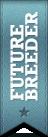 ribbon-futbreeder.png