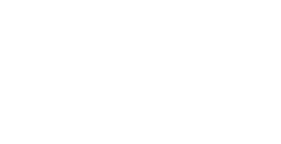 br_logo_double_wings_white.png