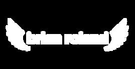 brian_roland_logo_double_wings_70_proc_w