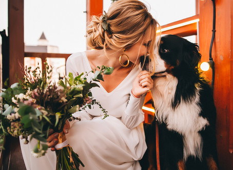 Bride Has a First Look Session With Her Dog—See The Adorable Photos