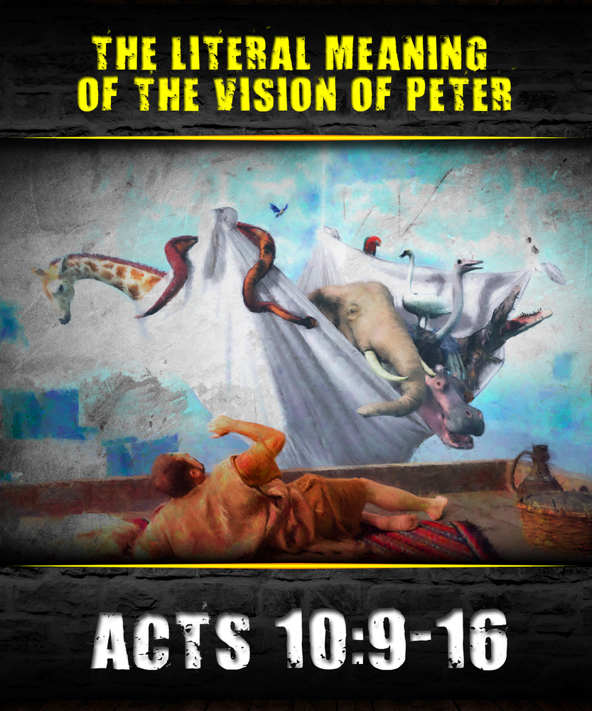 The literal meaning of peters vision in acts 109 16 the literal meaning of peters vision in acts 109 16 sciox Image collections