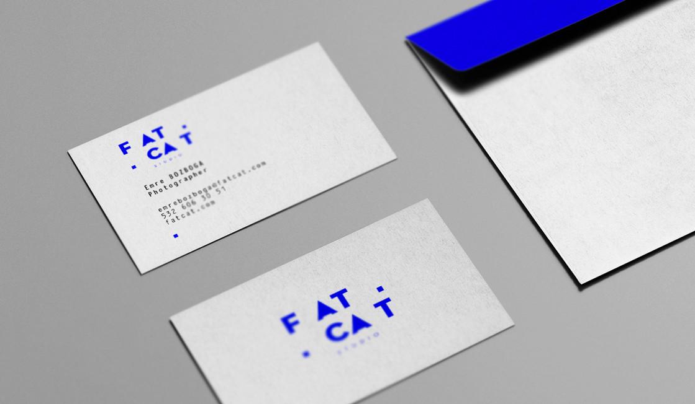 F_1b.jpg