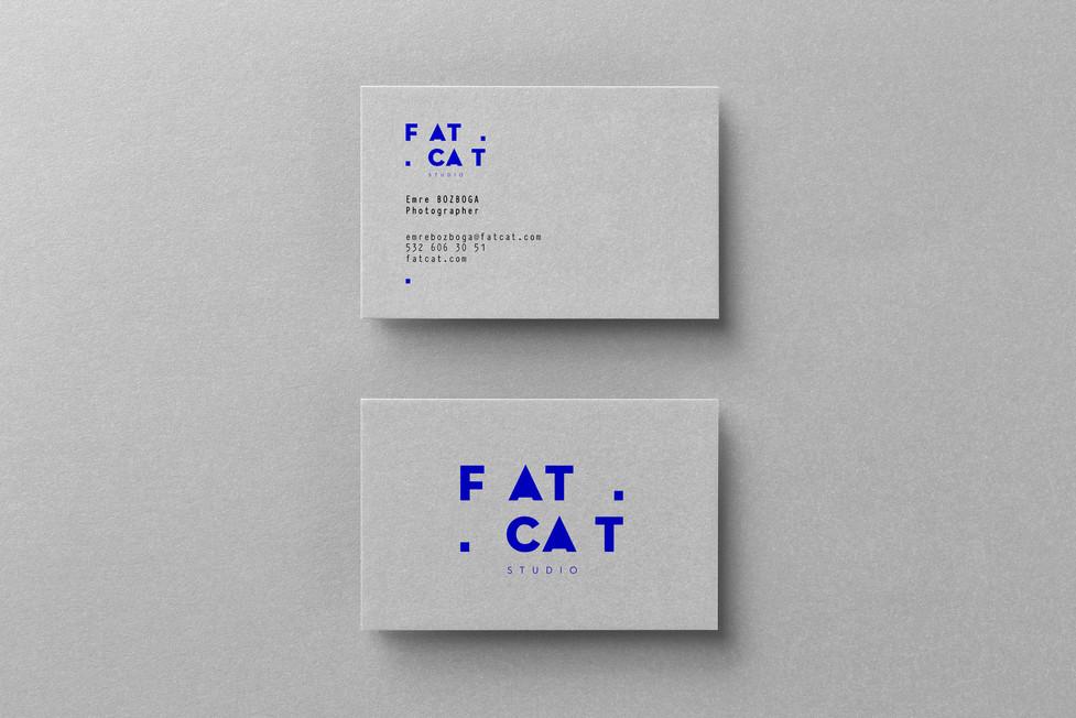 fat_cards.jpg