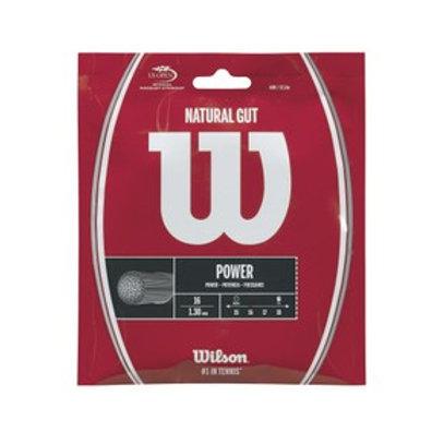 WIlson Natural Gut 12m Set