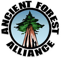 Ancient-Forest-Alliance-Logo.jpg