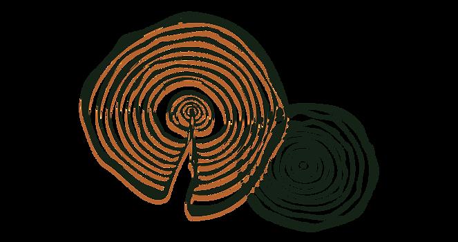 tree rings-09.png