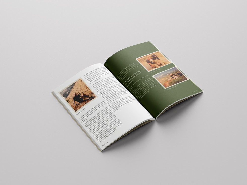 Out of Bounds Publication Design