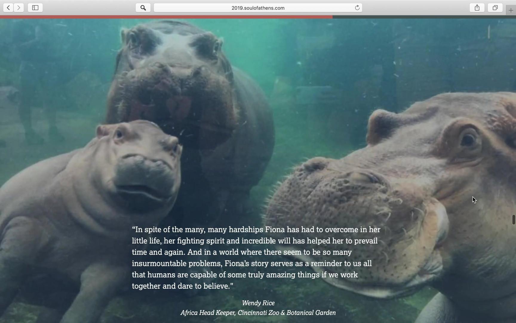 Cincinnati Zoo Website Project