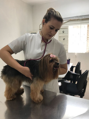 Nossa veterinária