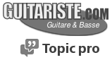 Logo guitariste.com liens Blind guitars