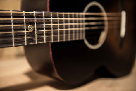 blind guitars-guitare détail