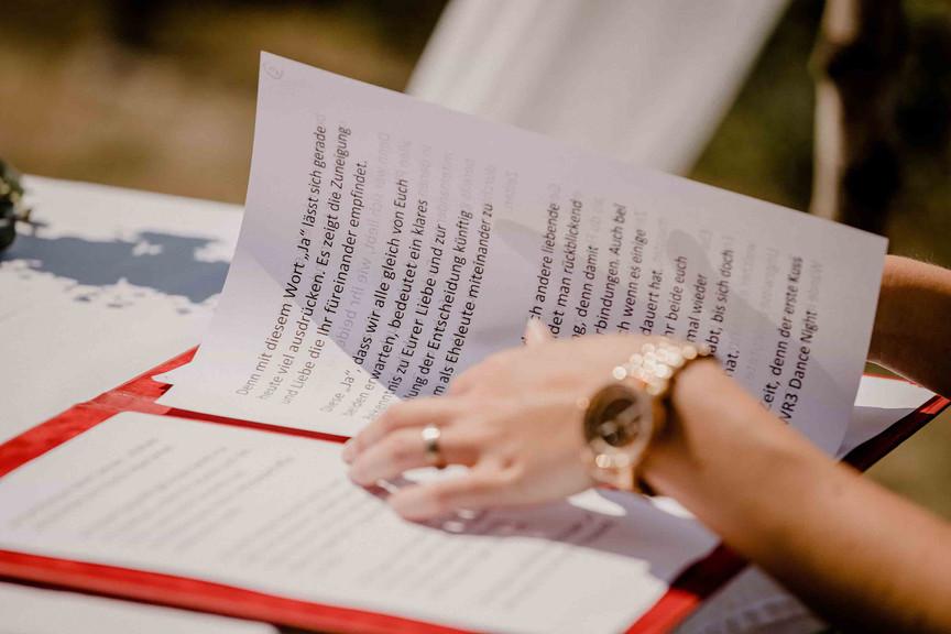 Hochzeit auf den Weinbergen Heilbronn-25.JPEG