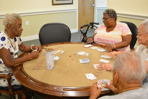 The Card Sharks of Springvale Terrace