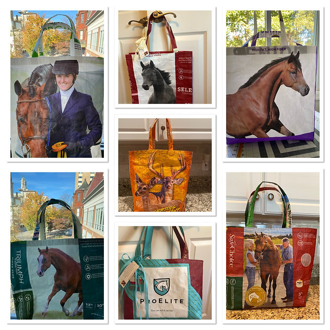 Bag collage.jpeg