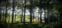 IMG_5970_edited_edited_edited.png
