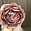 Thumbnail: Blush Flower Tiered Tray Gnome