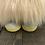 Thumbnail: Honey Bee Gnome