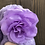 Thumbnail: Purple Flower Tiered Tray Gnome