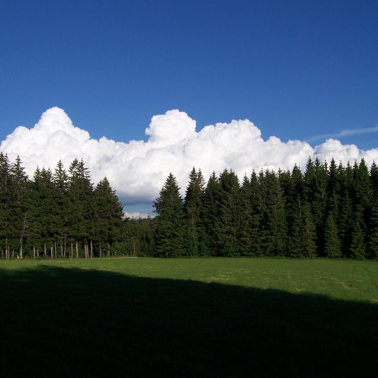 Abend wolken